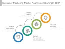 Customer Marketing Market Assessment Example Of Ppt
