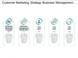 Customer Marketing Strategy Business Management Marketing Plan Sales Strategies Cpb