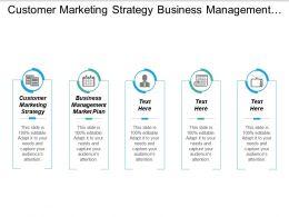 Customer Marketing Strategy Business Management Marketing Plan Sales Strategies Cpb