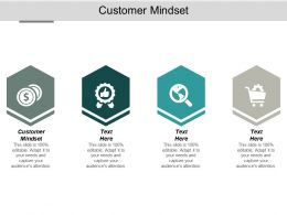 Customer Mindset Ppt Powerpoint Presentation Summary Display Cpb