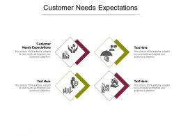 Customer Needs Expectations Ppt Powerpoint Presentation File Templates Cpb