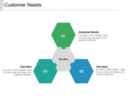Customer Needs Ppt Powerpoint Presentation Outline Inspiration Cpb