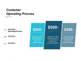 Customer Operating Process Ppt Powerpoint Presentation Professional Graphics Example Cpb