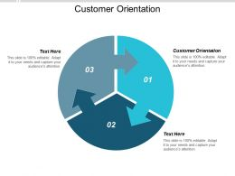 Customer Orientation Ppt Powerpoint Presentation Outline Rules Cpb