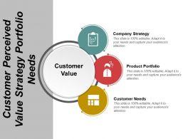 Customer Perceived Value Strategy Portfolio Needs