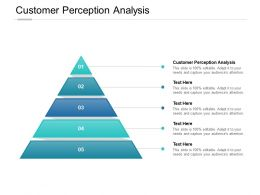 Customer Perception Analysis Ppt Powerpoint Presentation File Sample Cpb