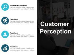 Customer Perception Ppt Powerpoint Presentation File Good Cpb