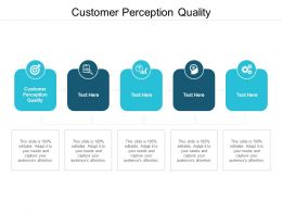 Customer Perception Quality Ppt Powerpoint Presentation Icon Cpb