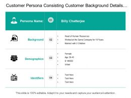 Customer Persona Consisting Customer Background Details Demographics Identifier
