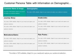 Customer Persona Table With Information On Demographic Goals Paint Points And Motivational