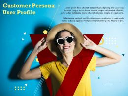 Customer Persona User Profile Target Consumer