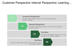 Customer Perspective Internal Perspective Learning Growth Perspective Function Structure