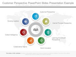 Customer Perspective Powerpoint Slides Presentation Example