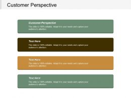 Customer Perspective Ppt Powerpoint Presentation Inspiration Example Introduction Cpb