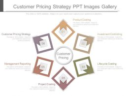 Customer Pricing Strategy Ppt Images Gallery