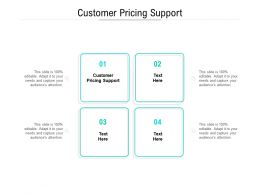 Customer Pricing Support Ppt Powerpoint Presentation Show Outfit Cpb
