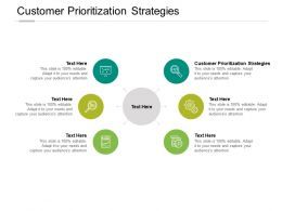 Customer Prioritization Strategies Ppt Powerpoint Presentation Pictures Portfolio Cpb