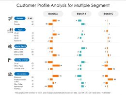 Customer Profile Analysis For Multiple Segment