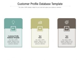 Customer Profile Database Template Ppt Powerpoint Presentation Portfolio Backgrounds Cpb