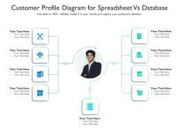 Customer Profile Diagram For Spreadsheet Vs Database Infographic Template