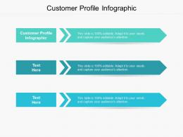 Customer Profile Infographic Ppt Powerpoint Presentation Ideas Visuals Cpb