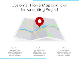 Customer Profile Mapping Icon For Marketing Project