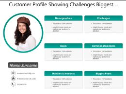 Customer Profile Showing Challenges Biggest Fears Objectives