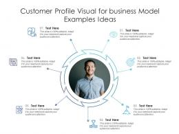 Customer Profile Visual For Business Model Examples Ideas Infographic Template