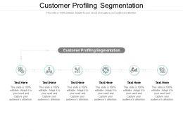 Customer Profiling Segmentation Ppt Powerpoint Presentation Icon Professional Cpb