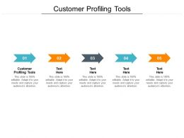 Customer Profiling Tools Ppt Powerpoint Presentation Slides Templates Cpb