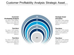 Customer Profitability Analysis Strategic Asset Allocation Programs Management Cpb