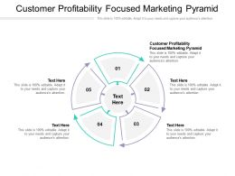 Customer Profitability Focused Marketing Pyramid Ppt Powerpoint Presentation Pictures Cpb
