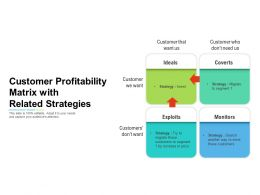 Customer Profitability Matrix With Related Strategies
