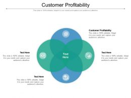Customer Profitability Ppt Powerpoint Presentation Professional Display Cpb