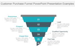 Customer Purchase Funnel Powerpoint Presentation Examples