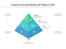 Customer Pyramid Model With Platinum Gold