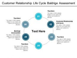 Customer Relationship Life Cycle Baldrige Assessment Key Positions Cpb