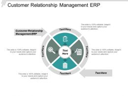 Customer Relationship Management Erp Ppt Powerpoint Presentation Icon Visuals Cpb