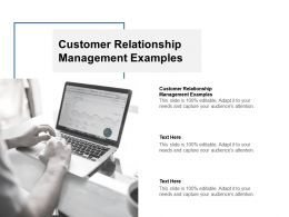 Customer Relationship Management Examples Ppt Powerpoint Presentation Slides Cpb