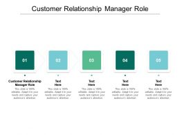 Customer Relationship Manager Role Ppt Powerpoint Presentation File Formats Cpb