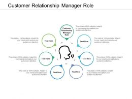 Customer Relationship Manager Role Ppt Powerpoint Presentation Professional Graphics Cpb