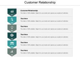 Customer Relationship Ppt Powerpoint Presentation Ideas Model Cpb