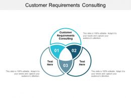 Customer Requirements Consulting Ppt Powerpoint Presentation Gallery Good Cpb