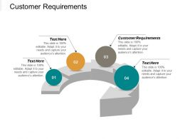 Customer Requirements Ppt Powerpoint Presentation Ideas Demonstration Cpb