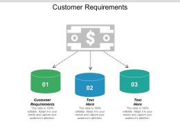 Customer Requirements Ppt Powerpoint Presentation Outline Show Cpb