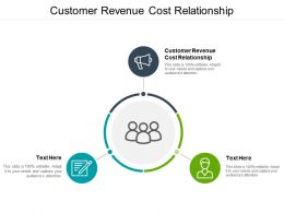 Customer Revenue Cost Relationship Ppt Powerpoint Presentation Portrait Cpb