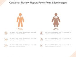 Customer Review Report Powerpoint Slide Images