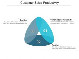 Customer Sales Productivity Ppt Powerpoint Presentation Guidelines Cpb
