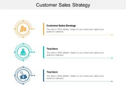 Customer Sales Strategy Ppt Powerpoint Presentation Slides Microsoft Cpb