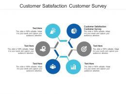 Customer Satisfaction Customer Survey Ppt Powerpoint Presentation Icon File Formats Cpb